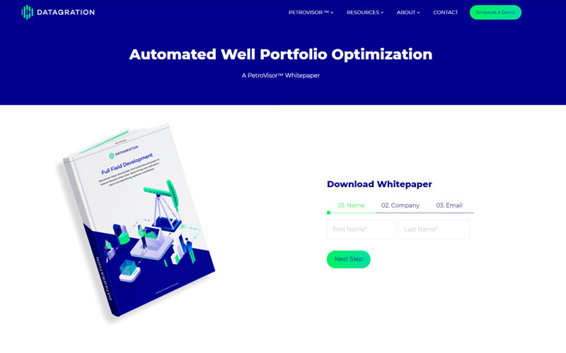 Datagration Solutions Multi-Step Form